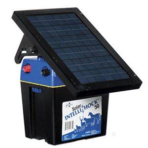 Premier-Solar-IntelliShock-30-Energizer-0