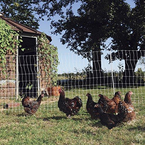 Premier PoultryNet Electric Fence, 48″H X 164L, Single Spiked, WhitePremier Top Seller